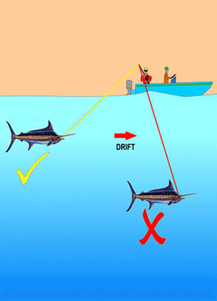 catfish free dating sites